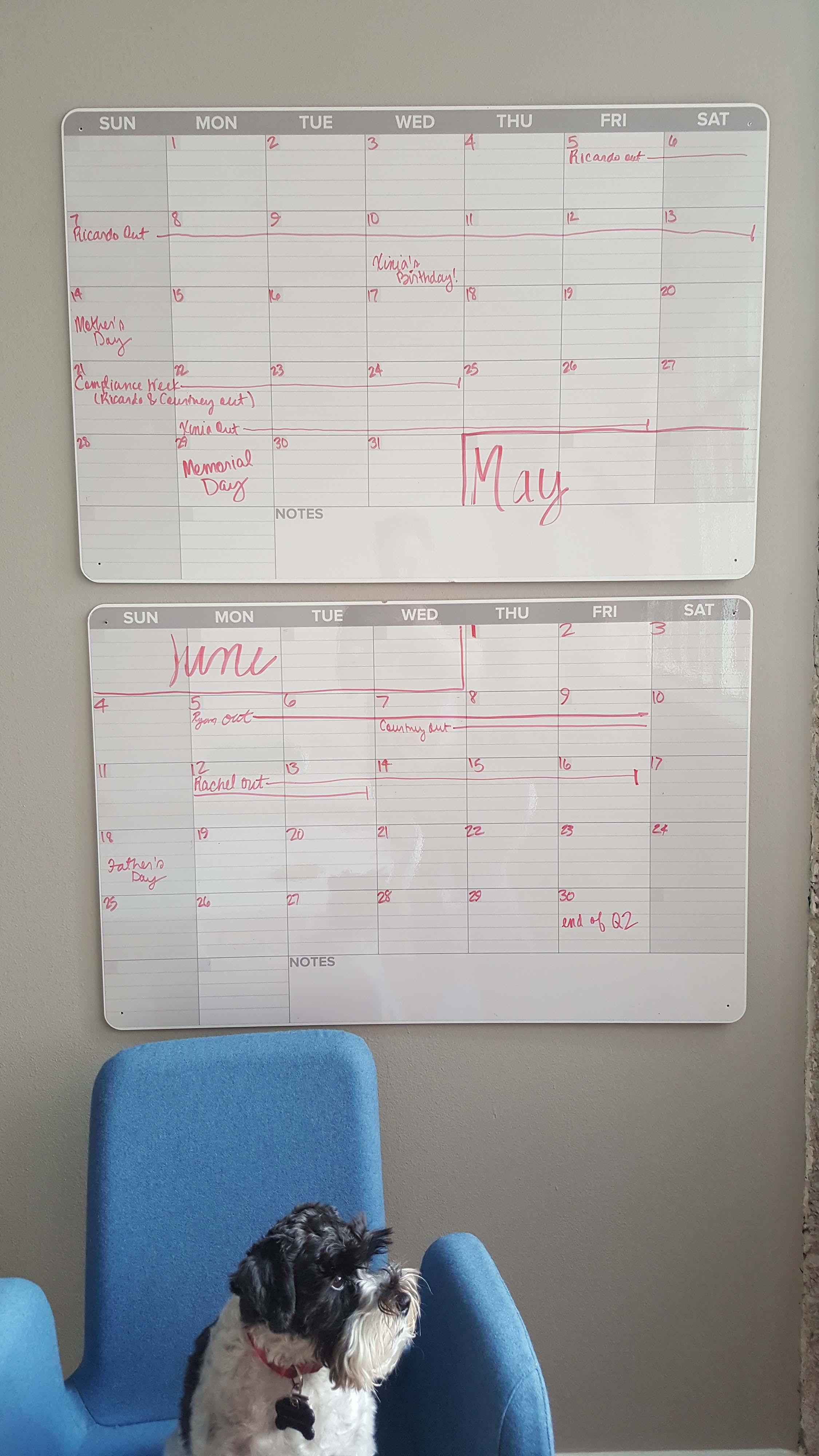 broadcat-vacation-calendar-plus-special-dog-appearance-1.jpg