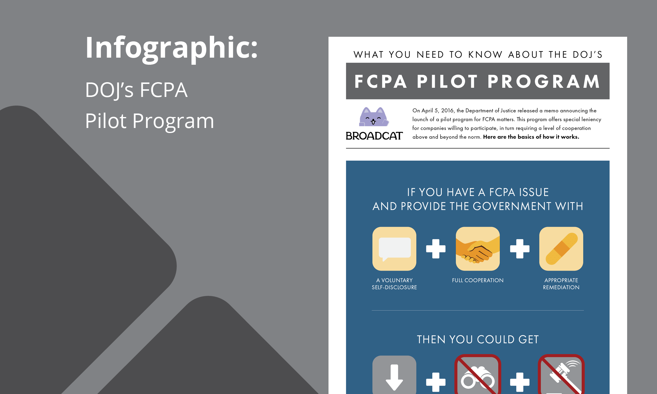 infographic-the-dojs-fcpa-pilot-program-visualized.png